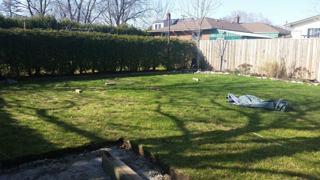 Here is our backyard once we removed the swing set