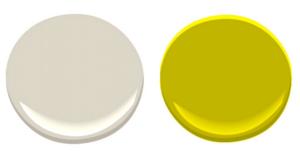 Gym Colour Combination