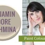 Bm Pashmina Paint Colour
