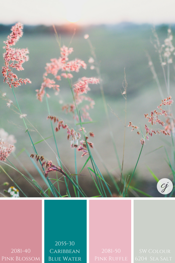 Sherwin Williams Sea Salt with Benjamin Moore's Pink Blossom; Caribbean Blue Water & Pink Ruffle