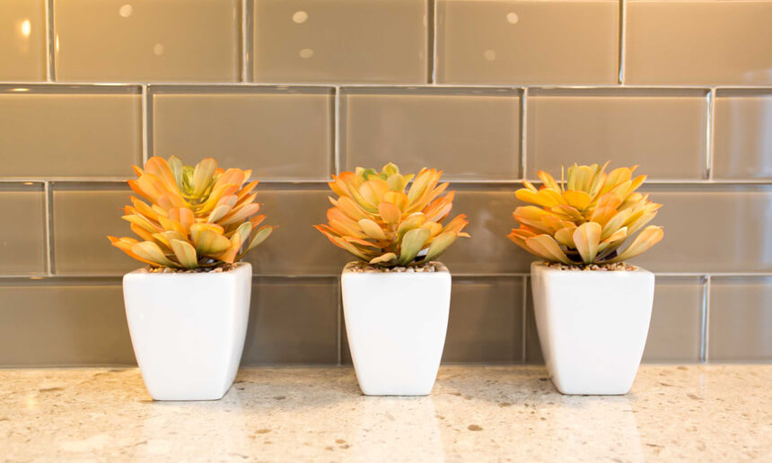 traditional-kitchen-plant-decor-and-painted-glass-subway-tile-backsplash