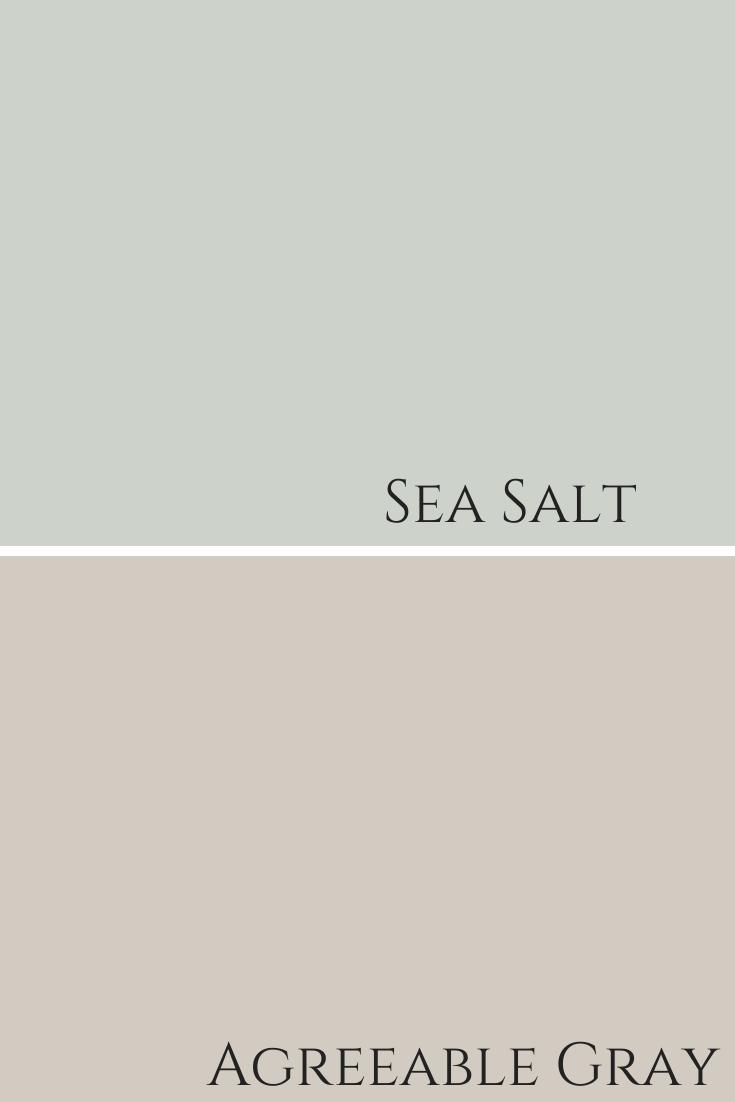 Agreeable Gray And Sea Salt