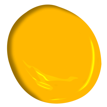 Golden Nugget 2019 20